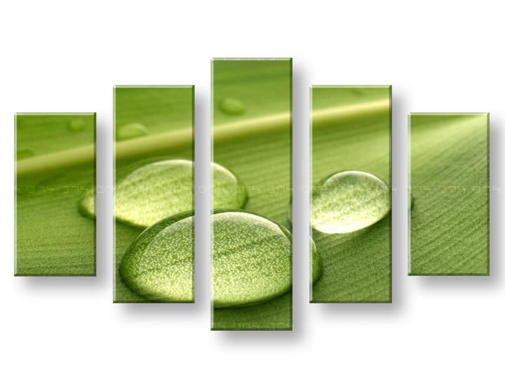 Tablouri canvas reducere 40 5 piese plante 100x70 cm for Plante 70 cm