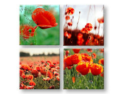 Tablou canvas Meadow of poppy poppies colaj 4 piese XOBKOL17E42
